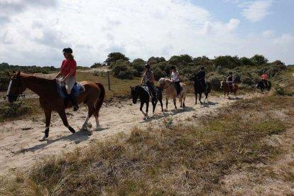 Paardrijden in de duinen