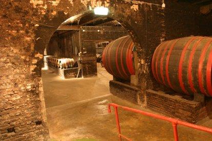 Wijn proeven in het Nederlands Wijnmuseum