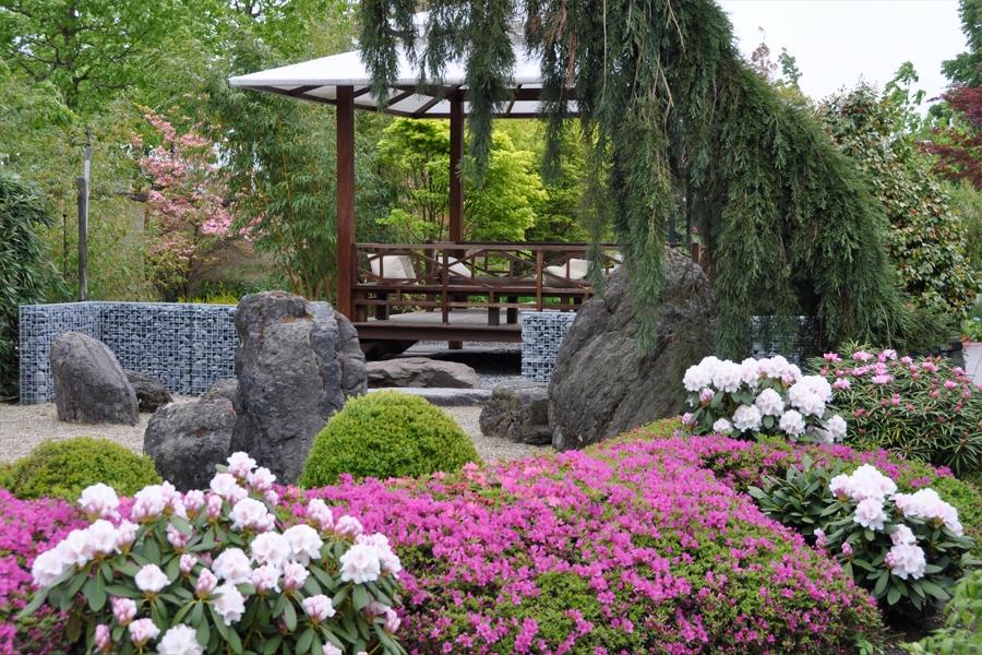De tuinen van appeltern een gezellig dagje tuinen kijken for Mooie tuinen kijken