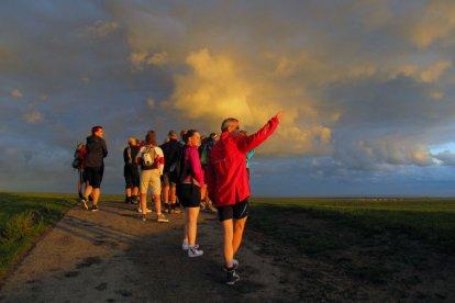 Ervaar hoe het is om een wadlooptocht te maken. Ervaren gidsen voeren je tijdens een tocht van zo'n 8 kilometer langs kwelders, slikvelden, zandbanken en diepe geulen. Na de tocht geniet je van wellness of zwembad. 's Avonds blijf je overnachten.